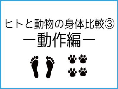 Human animal3
